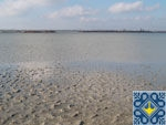 Dnipropetrovsk Sights | Solonyi Lyman Lake | Healing Mud and Mineral Water