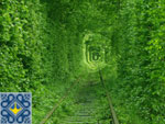Uman Sights | Tunnel of Love Ukraine